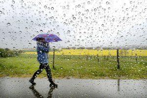 ธุรกิจทำเงินหน้าฝน